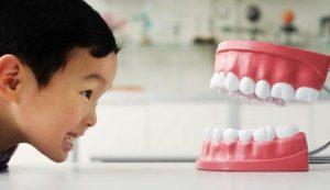 Kesehatan Gigi | Gigi tampak bersih dan sehat