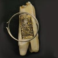 'Tato Gigi' Pendeteksi Penyakit akan Segera Hadir